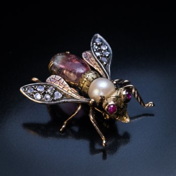 antique insect brooch